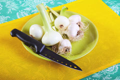 Still-life with garlic onions and kitchen knife Stock Images