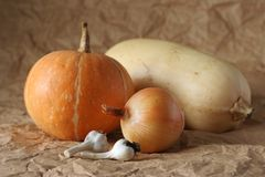 Still life of garlic, pampkin, onion and marrow. The still life photo of garlics, pampkin, marrow and onion royalty free stock images