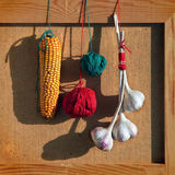 Still life with garlics, corn and color balloons Stock Photography