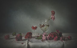 Still life with geranium Royalty Free Stock Image