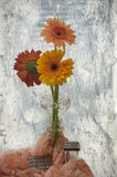 Still life with gerberas and chocolate Stock Images