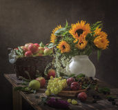 Still Life Gifts of Autumn. Cornucopia, healthy food, with a large wicker basket full of apples, with a gorgeous bouquet of sunflowers, grapes, plums stock images