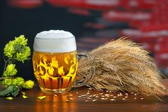 Still life with glass of beer. And barley royalty free stock photo