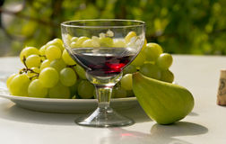 Still life- of a glass of wine,grapes and figs -outdoors. Still life - a goblet of wine,grapes and figs- outdoors.On the background of grape leaves Stock Images