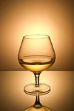 Still-life with the gold wine glass Stock Photos