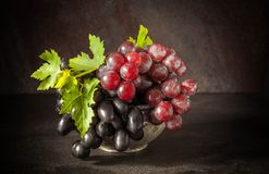 Still life with grape in the antique copper tin cup.  Royalty Free Stock Image