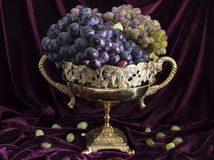 Still life with grape in vase 1 Royalty Free Stock Photos