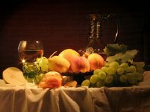 Still-life with grape-vine Royalty Free Stock Photos