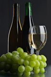 Still life with grape and wines Stock Photography