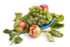 Still life grapes on a blue plate, apples and leaves Royalty Free Stock Photography