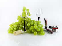 Still Life with Grapes Stock Photos