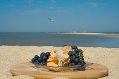 Still- life with grapes and shells Stock Photography