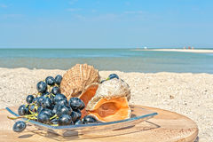 Still life with grapes and shells on the beach Royalty Free Stock Photography
