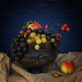 Still life with grapes and thorns. Still life with grapes, thorns and apples, blue background royalty free stock images