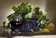 Still life grapes and wine stock illustration