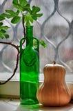 Still life. Green and orange. Stock Image