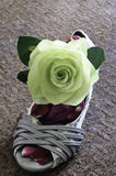 Still life of grungy lady shoe  with big green rose Stock Photo