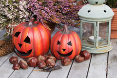 Still life Halloween. Halloween pumpkins with decoration on a wooden table Royalty Free Stock Image