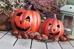 Still life Halloween. Halloween pumpkins with decoration on a wooden table Stock Photos