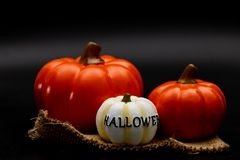 Still life Halloween pumpkin on black background. Dark Halloween royalty free stock photo