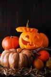 Still Life Halloween pumpkin Stock Image