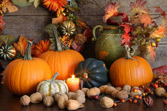 Still life harvest  decoration for Thanksgiving Stock Image