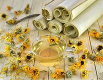 Still life with herbal tea and parchments Royalty Free Stock Images