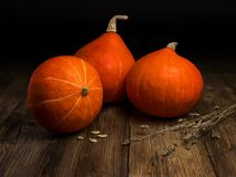 Still life with hokkaido pumpkins on old wooden boards royalty free stock photo