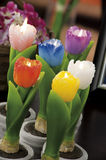 Still life of home lighting candles tulips Royalty Free Stock Photo