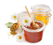 Still life with honey, flowers and pollen Stock Photography