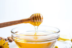 Still life of honey Stock Photography