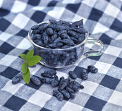Still life with honeyberry in glass cup on checked napkin Royalty Free Stock Photos