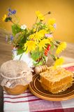 Still life with honeycombs Royalty Free Stock Image