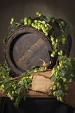 Still-life with hops Stock Image