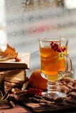 Still life with hot tea in autumn decoration Royalty Free Stock Images