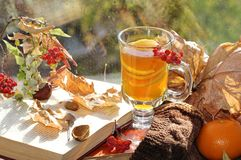 Still life with hot tea in autumn decoration Stock Photos
