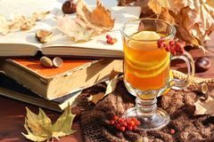 Still life with hot tea in autumn decoration Royalty Free Stock Photo