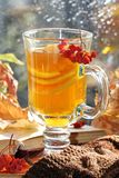 Still life with hot tea in autumn decoration Stock Images