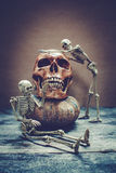 Still life with a human skull. Royalty Free Stock Photo
