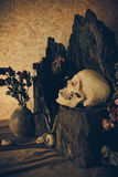 Still life with a human skull with desert plants, cactus, roses Royalty Free Stock Photography