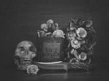 Still life with human skull and dry flowers. Still life with human skull and knife and dry flowers, Vintage style royalty free stock images