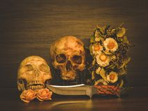 Still life with human skull and dry flowers. Still life with human skull and knife and dry flowers, Vintage style stock images