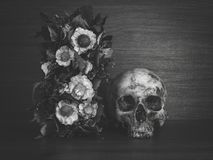 Still life with human skull and dry flowers. Vintage style stock image