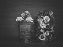 Still life with human skull and dry flowers. Vintage style royalty free stock photo