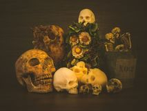 Still life with human skull and dry flowers. Vintage style stock images