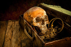 Still life with a human skull with old treasure chest and gold,. Diamond and jewelry royalty free stock image