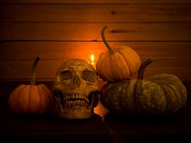 Still life with human skull and pumpkin. Vintage style stock photos