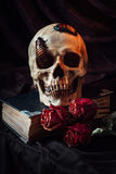 Still life with human skull stock photos