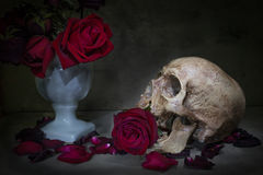 Still life human skull. Still life with human skull and red roses in vase. Low key light royalty free stock images