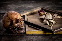 Still life with human skull and roses dried in a picture frame Stock Photo